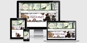 ecommerce websites north wales